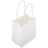 White Ready to Decorate Small Gift Bags 5 Pack