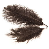 Hobbycraft Small Ostrich Feathers In Black x 2