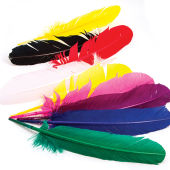 Hobbycraft Assorted American Feathers